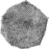 Faustovirus_50Kx30